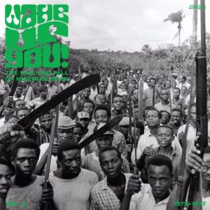 Wake Up You: The Rise & Fall Of Nigerian Rock Vol. 2 - Various Artists