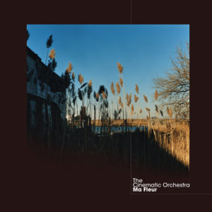 The Cinematic Orchestra - Ma Fleur (2017) [2LP] (Ltd Ed)