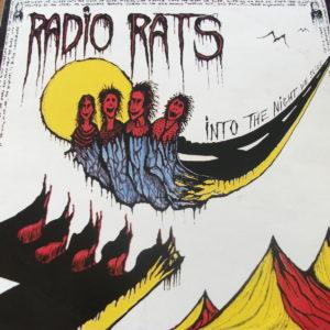 Radio Rats - Into The Night We Slide (1978)